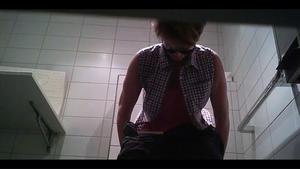Swiss toilet 2