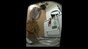 15386772wc Japanese style toilet for beautiful women